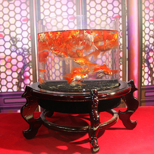 Deluxe Fish Tank