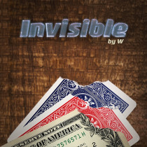 Invisible (DVD and Gimmicks) by W