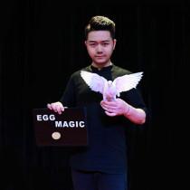 Egg & Dove Book