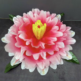 Peony Production - Gradient (3 Colors)