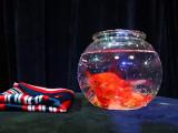 Magic Goldfish Bowl (Small) by J.C Magic