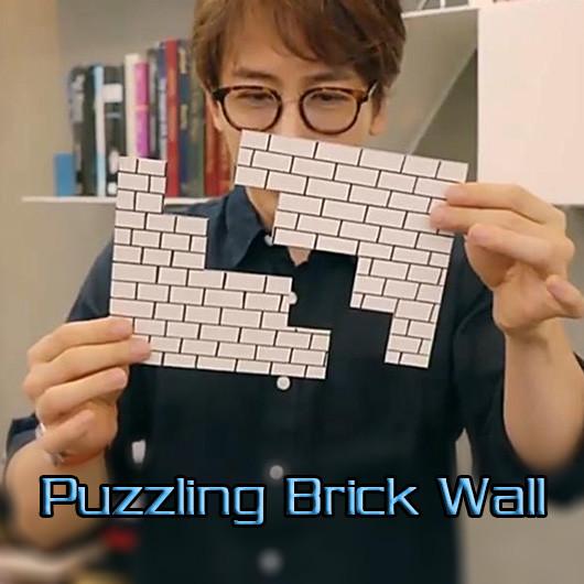 Puzzling Brick Wall