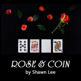 Rose & Coin by Shawn Lee