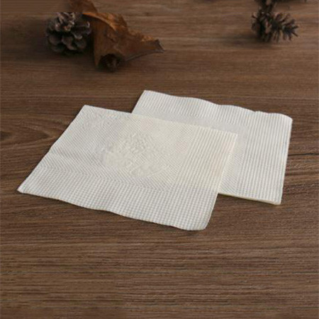 Flash Napkin (Pack of 4)