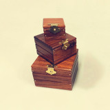Super Locked Boxes - Professional (ROSEWOOD EDITION)