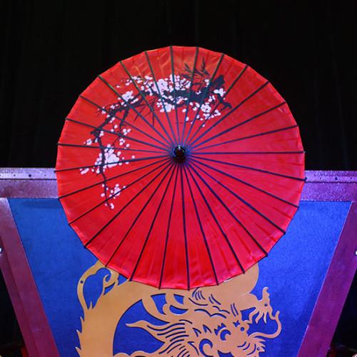 Traditional Umbrella Production (Plum Blossom, 27 Inch)