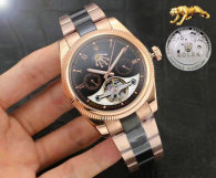 Rolex Watches (803)
