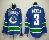 Vancouver Canucks 2011 Stanley Cup Finals -3 Kevin Bieksa Blue Stitched NHL Jersey