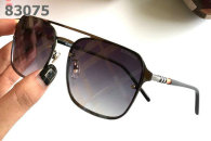 Burberry Sunglasses AAA (491)