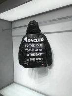 Moncler Down Jacket (545)
