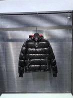 Moncler Down Jacket (539)