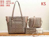 Coach Handbag (15)
