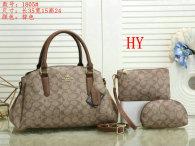 Coach Handbag (28)