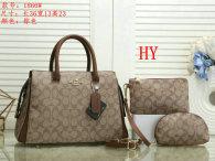 Coach Handbag (33)