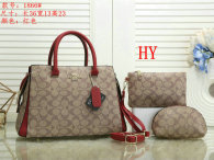 Coach Handbag (35)