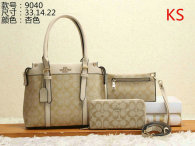 Coach Handbag (54)