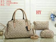 Coach Handbag (30)