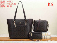 Coach Handbag (12)