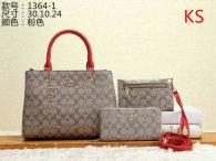 Coach Handbag (52)