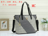 CH Handbag (12)