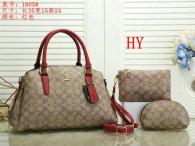 Coach Handbag (29)