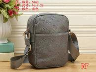 LV Bag (25)