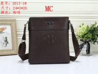 LV Bag (9)