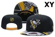 NHL Pittsburgh Penguins Snapback Hat (14)