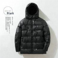 Moncler Down Jacket (560)