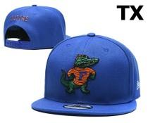NCAA Florida Gators Snapback Hat (21)