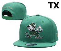 NCAA Notre Dame Fighting Irish Snapback Hat (2)