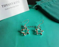 Tiffany Earrings (229)