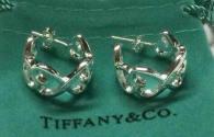 Tiffany Earrings (224)