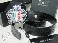 D&G Belt AAA (34)