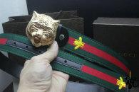 Gucci Belt AAA (73)