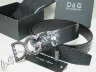 D&G Belt AAA (33)