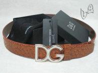 D&G Belt AAA (30)
