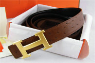 Hermes Belt 1:1 Quality (630)