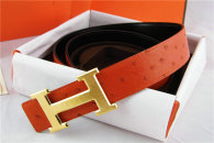 Hermes Belt 1:1 Quality (631)
