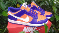 Nike SB Dunk Low Women (23)