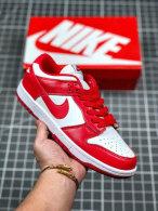 Nike SB Dunk Low (35)
