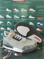 Air Jordan 3 Shoes AAA (65)