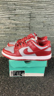 Nike SB Dunk Low (39)
