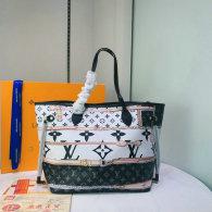 LV Handbag (334)