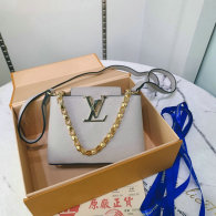 LV Handbag (335)