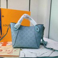 LV Handbag (331)