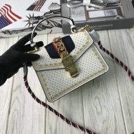Gucci Handbag AAA (199)