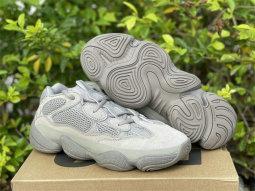 Authentic Y 500 Ash Grey