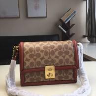 Coach AAA Quality Bag (14)