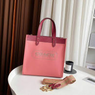 Coach AAA Quality Bag (3)